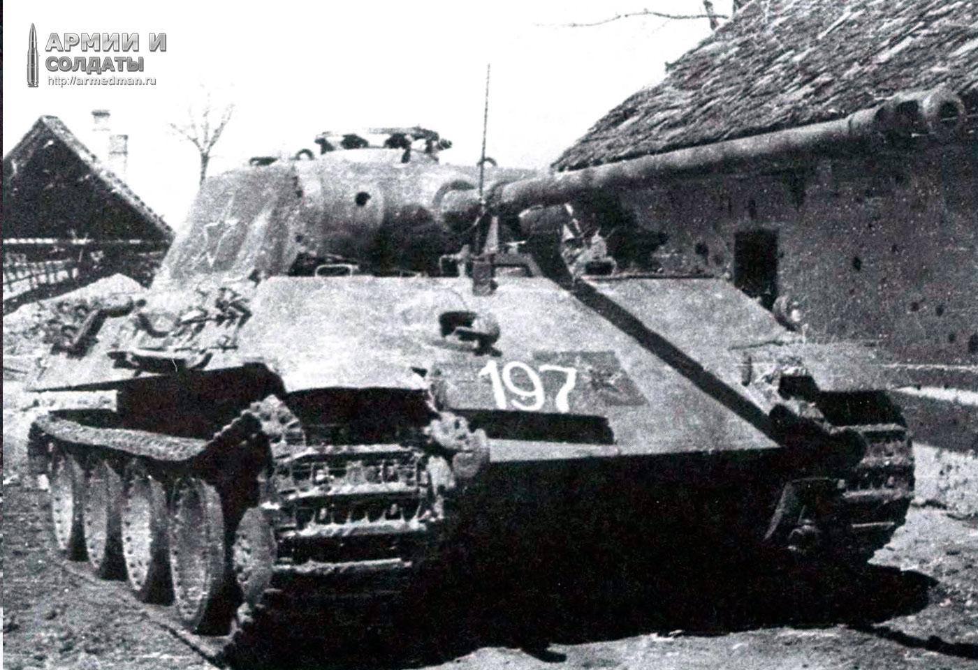 трофейная-пантера,-1945-год,-366-й-самоходн-артел-полк,-3-укр-фронт,-4-я-гвард-армия