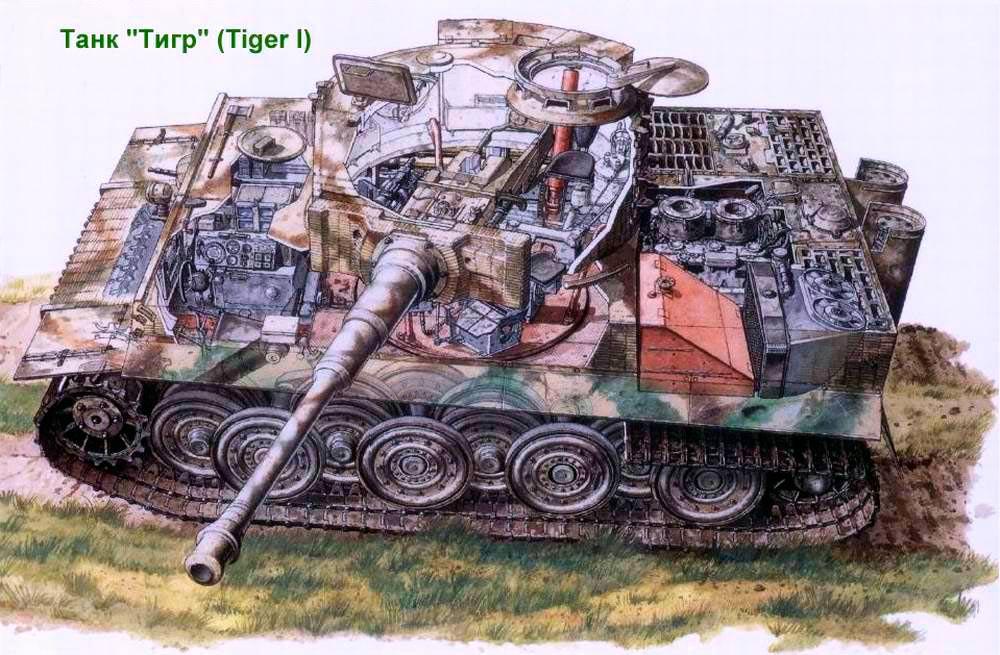 """Разрез тяжелого танка Pz VI """"Тигр"""". Хорошо видна схема размещения катков и двигатель"""