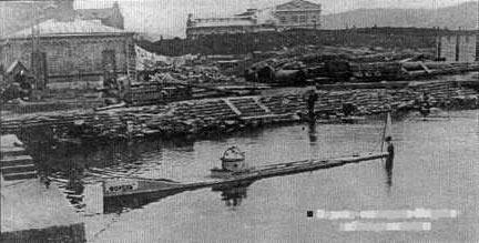 Форель в гавани Владивостока