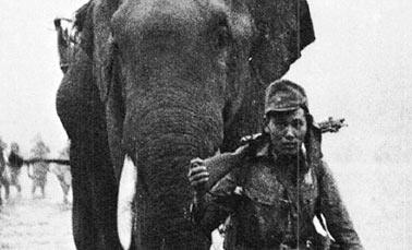 Военные фотографии, застывшая история (4 часть)