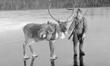 Военные фотографии, застывшая история (7 часть)